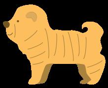 Dog 4-01