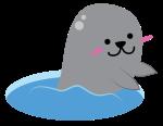 Seal-01