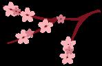 Sakura-02